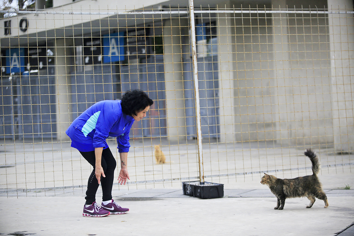 gives an interview to WAP staff at the Citta Vet pet clinic/ Maracana Venue/ Deodoro Olympic venue in Rio de Janeiro, Brazil, Wednesday, June 8, 2016.(Hilaea Media/Dado Galdieri)