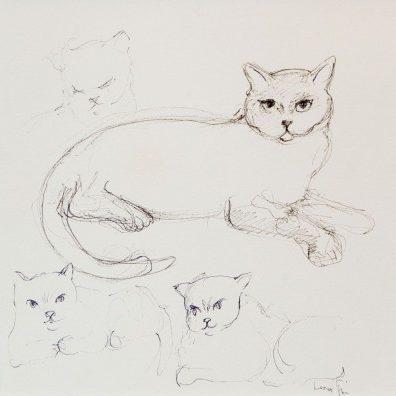 leonor-fini-peintures-dessins-1988-quatre-chats1-400x396